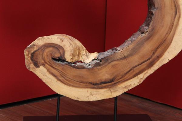 gro es baumscheiben kunstwerk aus einer massivholz suar wurzel. Black Bedroom Furniture Sets. Home Design Ideas